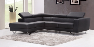 Leather Couch for LeaterProtect